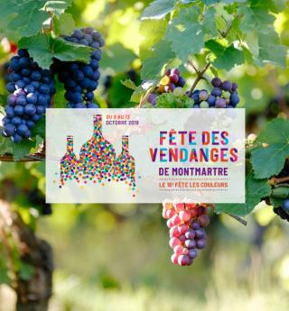 The popular, offbeat, unmissable Montmartre Grape Harvest Festival